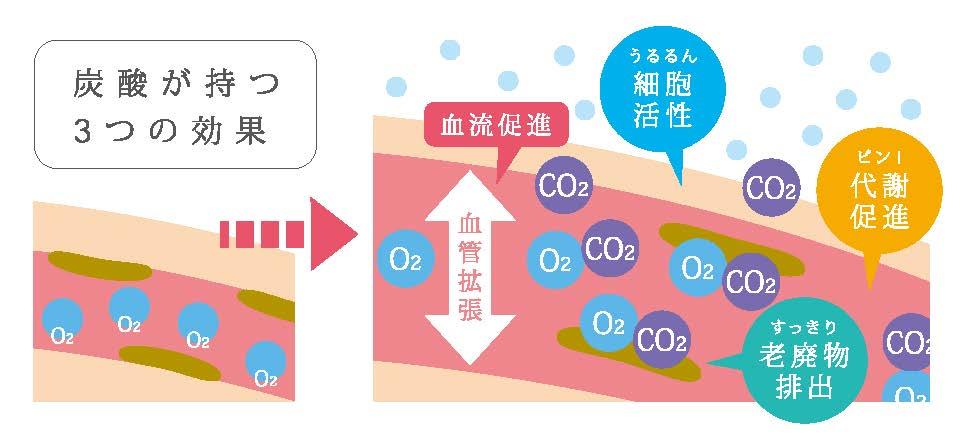炭酸の3つの効果